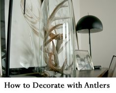 How to Decorate with Antlers