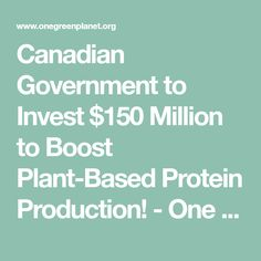 Canadian Government to Invest $150 Million to Boost Plant-Based Protein Production! - One Green PlanetOne Green Planet