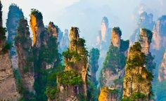 The surreal stone pillars in Zhangjiajie, China.
