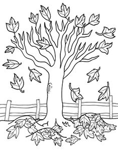 Fall Kindergarten Nature Worksheets: Maple Tree Coloring Page Worksheet - Coloring Pages Fall Coloring Sheets, Fall Coloring Pages, Adult Coloring Pages, Coloring Pages For Kids, Thanksgiving Coloring Pages, Kids Coloring, Autumn Crafts, Autumn Art, Autumn Theme