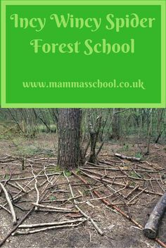 Incy Wincy Spider forest school, learn spiders outdoor learning nature learning mini beasts www. Forest School Activities, Eyfs Activities, Nature Activities, Kindergarten Activities, Outdoor Activities, Outdoor Education, Outdoor Learning, Early Education, Outdoor School