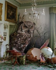 bienenkiste: Eagle owl and hatched eggs by Tim Walker Shotover Park, Oxfordshire, 2010 x Tim Walker Photography, Art Photography, Inspiring Photography, Fashion Photography, Photo Illusion, Foto Picture, Photocollage, Owl Art, Illustrations