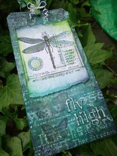 Words and Pictures. http://alisonbomber.blogspot.co.uk/2013/06/dragonfly-high.html   my take on Tim Holtz's glorious June tag...
