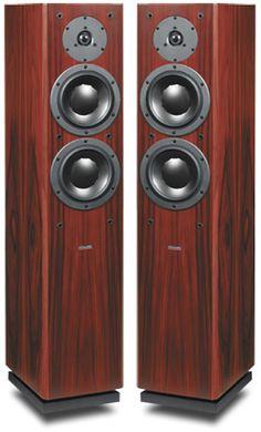 Dynaudio Focus 220 floorstanding speakers - mine was black wooden finish