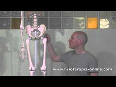 Trocanteritis izquierda- Visión desde la fisioterapia y la medicina natural.