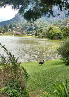 Teresopolis, Lago Comary.
