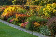 Wil jij ook prachtige herfstkleuren in je tuin? Op Libelle.be ontdek je nu welke tuinklussen je in september moet klaren voor de perfecte najaarstuin.   #tuin #garden #groenevingers #love #mijnlibellemoment