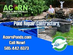 ​The key to a low maintenance fish pond is to keep your new ecosystem pond in balance in Western New York (NY) and by cleaning it at least once a year you can help eliminate problems & repairs down the road like sludge or muck build up Koi Fish Pond, Fish Ponds, Power Washing Services, Small Water Gardens, Pond Cleaning, Pond Maintenance, Livingston County, Erie County, Leak Repair