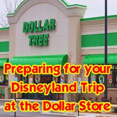 A Dollar Store Visit To Prep For Disneyland