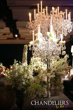 The grand royale chandeliers to die for pty ltd the grand chandeliers by chandeliers to die for event design by sharon penny designs fully loaded with high quality sparkling crystal aloadofball Choice Image