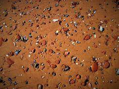 Prince Edward island beach. Image taken by Bernadeta Milewski.