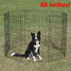 #Pet #Playpen #Dog #Exercise #Pen 48-inch Tall #Large #Cage #Kennel #Wire #Fence #Portable https://t.co/EbzBUO6lfG https://t.co/PM3nmyDynb