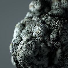 Stone Sculpt #3dcoat #c4d #arnold by tnsor