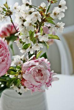 VIBEKE DESIGN *•. ❁.•*❥●♆● ❁ ڿڰۣ❁ ஜℓvஜ♡❃∘✤ ॐ♥..⭐..▾๑ ♡༺✿ ♡·✳︎· ❀‿ ❀♥❃.~*~. SAT 19th MAR 2016!!!.~*~.❃∘❃ ✤ॐ ❦♥..⭐.♢∘❃♦♡❊** Have a Nice Day! **❊ღ༺✿♡^^❥•*`*•❥ ♥♫ La-la-la Bonne vie ♪ ♥❁●♆●○○○