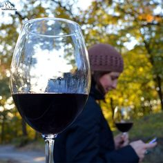 #autumn #forest #leaves #yellow #wine #wineday #redwine #redwinelovers #cabernetsauvignon #merlot #cabernetfranc #perefectday