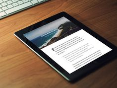 Here is the design concept for a RSS Reader app. Free PSD designed and released by Alex Vanderzon.
