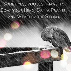 Sometimes, you just have to bow your head, say a prayer, and weather the storm.