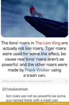 "disney at its finest: ""How about we use trash can lids for lion roars!"" ""No crazier then when pixar contemplated on how a Mr. Disney Pixar, Disney Memes, Disney And Dreamworks, Disney Films, Disney Actual, Disney Love, Disney Magic, Dc Memes, Funny Memes"