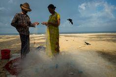 Alex Webb - INDIA. Marari Beach. 2014. Fishermen.