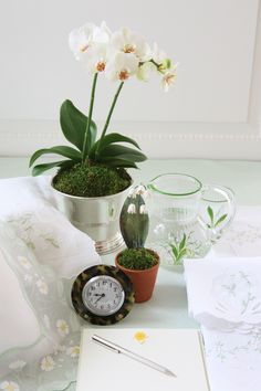 Night Stand Vignette ~ Accessorized with Orchid and Lily of the Valley plant, a Small Tortoiseshell Clock, Glass and Water Pitcher, Pen and Pad