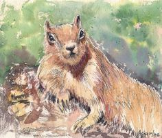 Original Painting Chipmunk Relaxing Squirrel Animal art Watercolors Wall Art Gift Art Affordable For Gifting by ArtbyAshaa on Etsy