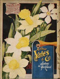 Arthur Yates & Co. Ltd, Sydney and Aukland 1899   back cover