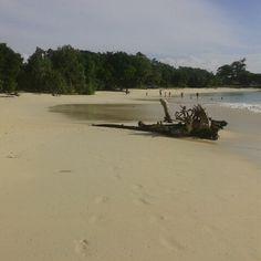 Pantai Linau Bengkulu Selatan