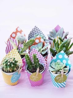 12 Diy Kids Birthday Party Favors - diy Thought Baby Shower Return Gifts, Baby Shower Prizes, Baby Shower Themes, Baby Shower Decorations, Shower Ideas, Cheap Baby Shower Favors, Suculentas Diy, Cactus Y Suculentas, Fiesta Baby Shower