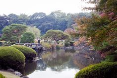 Tokyo (43)