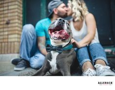 Philadelphia Wedding Photographers: Allebach Photography - Creative South Philly Dog Engagement Photographers: Check out this super cute pitbull in this engagement session on Passyunk in South Philly. &nbsp,If you are looking for a creative South Philadelphia engagement photographer, check out Allebach Photography. &nbsp,We are located only minutes from Philadelphia.    Photo taken at&nbsp,1501 E Passyunk Ave, Philadelphia, PA&nbsp, . Location: 1501 E Passyunk Ave, Philadelphia, PA 19147.