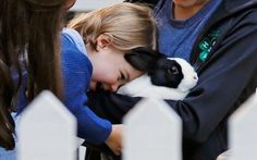 Princess Charlotte meets a rabbit at the children's party at Government House during Day 6 of the Royal Canada tour - Sept 2016.