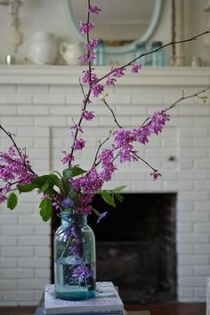 Cottage Fix - redbud branches in a blue Ball canning jar