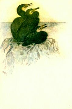 Kunstnerkort THOROLF HOLMBOE. 3 SKARVER I REIRca 1925