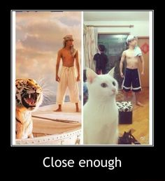 """""""Nailed it"""" meme joke pic: Life of Pi imitation. For more great humor and funny pics visit www. Funny Shit, The Funny, Funny Cats, Funny Animals, Cute Animals, Funny Memes, Hilarious, Funny Stuff, Funny Life"""