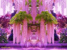 Funny pictures about A purple wisteria flower garden in Japan. Oh, and cool pics about A purple wisteria flower garden in Japan. Also, A purple wisteria flower garden in Japan.