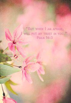 8x10 Fine Art Bible Verse But when I am afraid I will