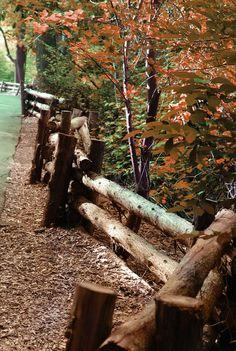 Log Fence Art