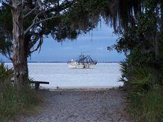 Jekyll Island Camping - Nov 2010 (39) by greenkayak73, via Flickr