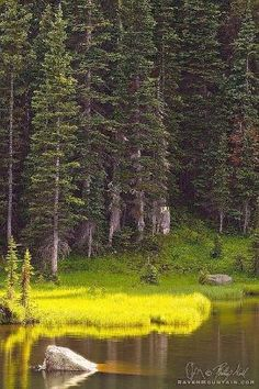 ✯ Rocky Mountain National Park, Colorado by herland