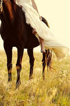 Horse and bride--shoulda done this with my Hershey man :) maybe I can get Em to do this.