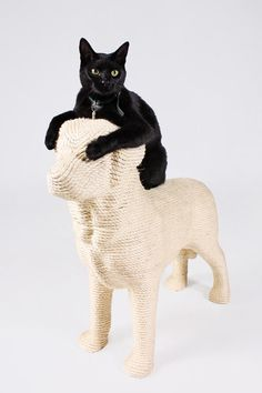 Yes, this is a product for cats, but it's a dog! So, I had to post it here. A silly, yet cute idea, Netherlands-based designer Erik Stehmann wraps rope around a dog silhouette to create the ultimate scratching post.