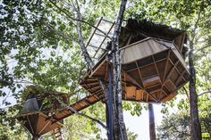 Super Creative Sacred Geome-Tree House,... - HomeAway Montezuma