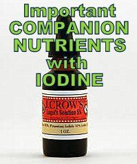 Companion Nutrients: The Key to Success on the Iodine Protocol - Stop The Thyroid Madness 12/29/13 Companion Nutrients