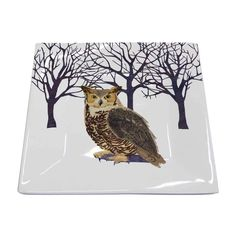 Paperproducts Design New Bone China Small Square Plate Featuring The Distinctive Winter Owl Design, x Multicolor Tabletop Accessories, Square Plates, China Plates, Create Image, Fine Porcelain, Animal Design, Bone China, Art Images, Moose Art