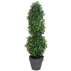 22' Boxwood Ball and Cone-Shaped Artificial Topiary Plant w/Paper Mache Pot -Green (pack of 4) *** For more information, visit image link.