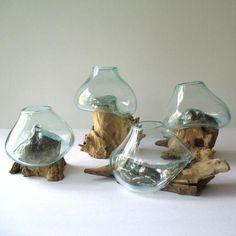 Molten Glass on Driftwood Terrarium - Image 6 of 6 Glass Wall Art, Fused Glass Art, Glass Planter, Glass Vase, Small Terrarium, Garden Terrarium, Project Blue Book, Container Flowers, Driftwood