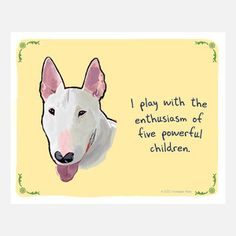 """""""I play with the enthusiasm of five powerful children"""" English Bull Terrier"""