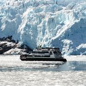 Alaska Glacier & Wildlife Cruises | Major Marine Tours. We did the four-hour cruise and saw Humpback Whales, Sea Lions and Mountain Goats. I definitely enjoyed the Kenai Fjords tour more because we saw orcas, but we toured a different part of Resurrection Bay on that trip.