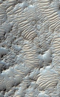 Is there life on Mars? - All the Interesting Information You're Wondering Here