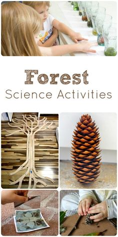 Forest Science Activities for Kids. These activities get the child engaged in the science activity by using art lessons!
